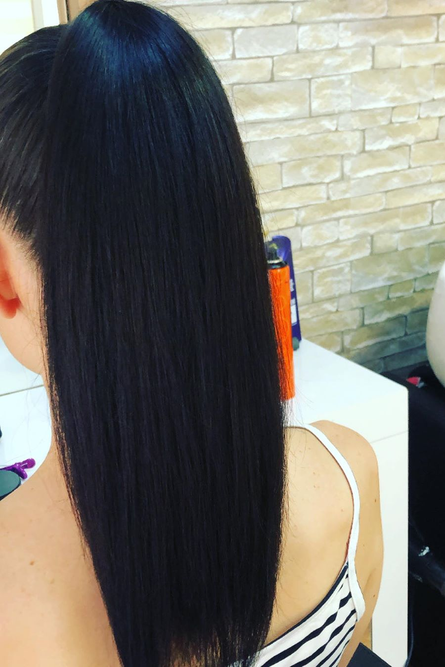 High Ponytail Hairstyle 2